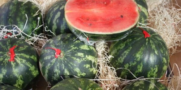 Wassermelon
